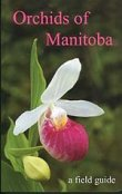 Orchids Of Manitoba