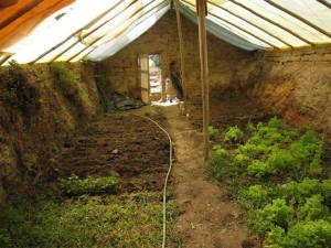 Greenhouse Truly Underground...!