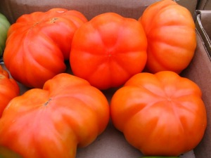 Tomato Mandy's Mystery Ruffle