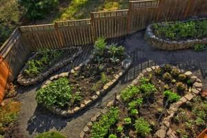 Garden in Oval Designs