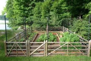 A Fenced Garden