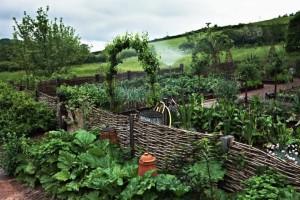 A Secret Garden in Wicker